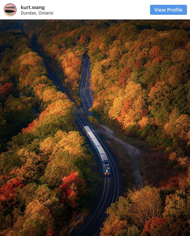 枫叶红了!秋天的多伦多美不胜收,这些地方赏枫最佳!