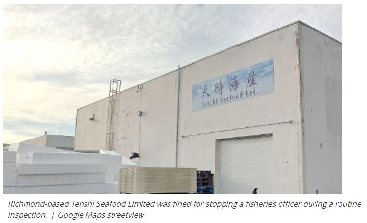 加国华人非法捕捞小螃蟹,遭查后生吞收据,被罚11万!